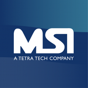 Management Systems International (MSI)